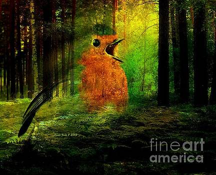 Robin In The Forest by AZ Creative Visions