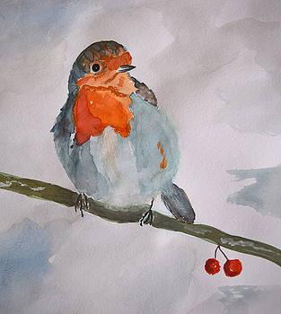 Robin  by Inessa Williams