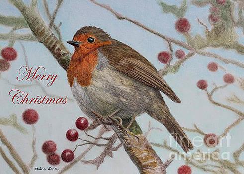 Robin Merry Christmas Greetings Card by Elaine Jones