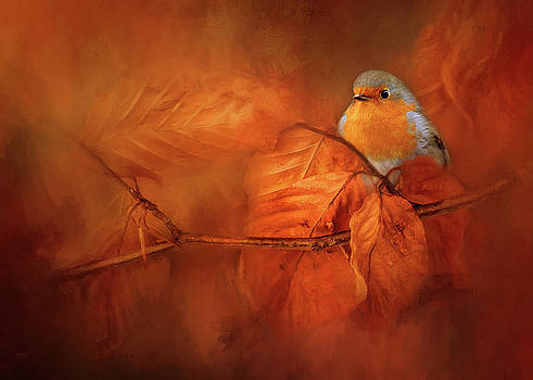 Robin Red Breast In Autumn by Theresa Tahara