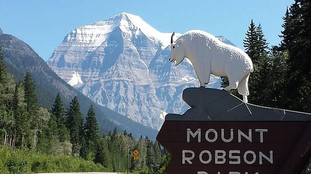 Robson goat by Glen Frear