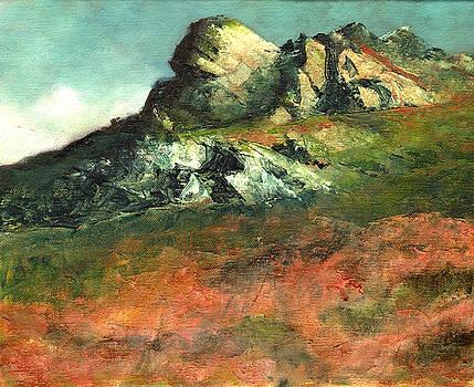 Roche Rock by John Tregembo