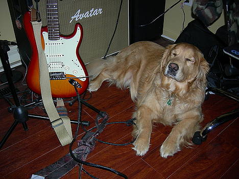 Rock And Roll Dog by L Hammond