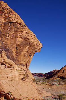 Rock Cliff by Frank Freni