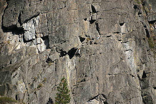 Rock Climbers by James Thompson