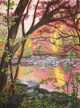 Rock Creek Autumn by Patricia Ortman