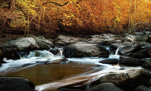 Rock Creek Park by Ed Clark