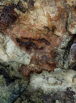Rock Dreaming 2 by Denise Clark