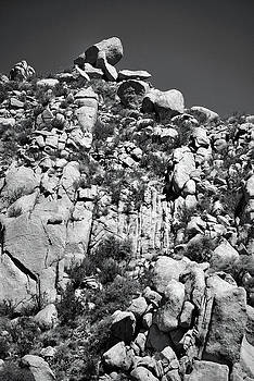 Rock Face Sandia Mountain by Ron Cline