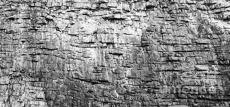 Rock Face Texture Black And White by Tim Hester