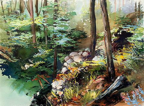 Rock Garden by Shirley  Peters