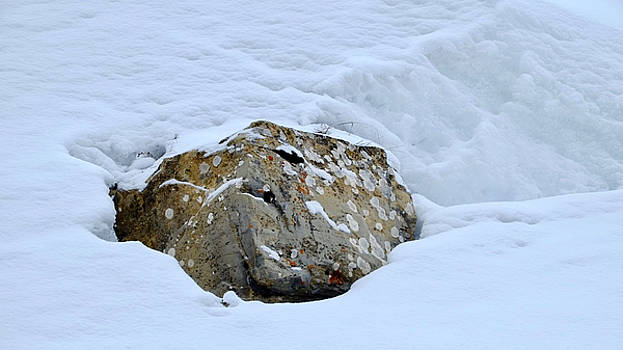 Rock in Snow by August Timmermans