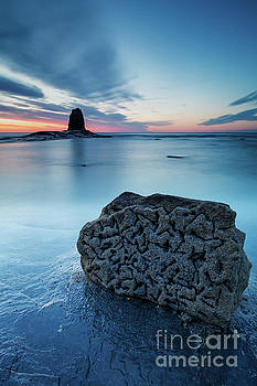 Rock of Times, Saltwick Bay by Martin Williams