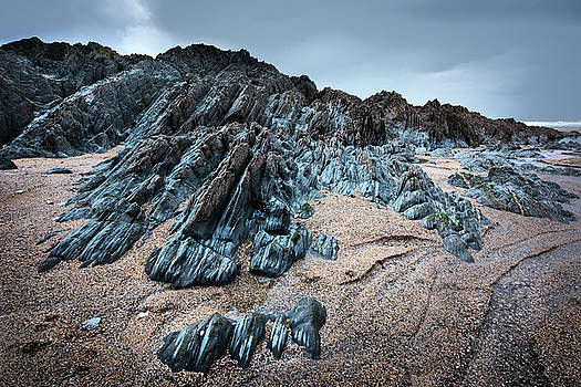 Rock Paw by Svetlana Sewell