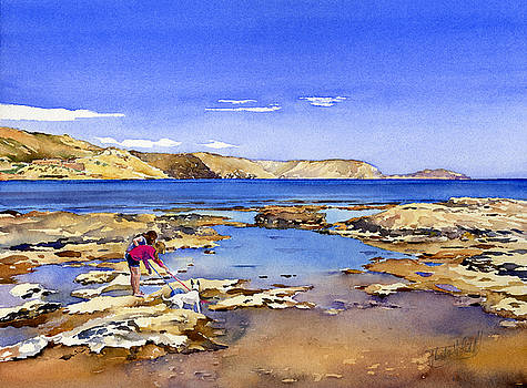 Rock Pools of Rodalquilar by Margaret Merry