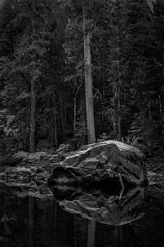 Rick Strobaugh - Rock Reflections BW