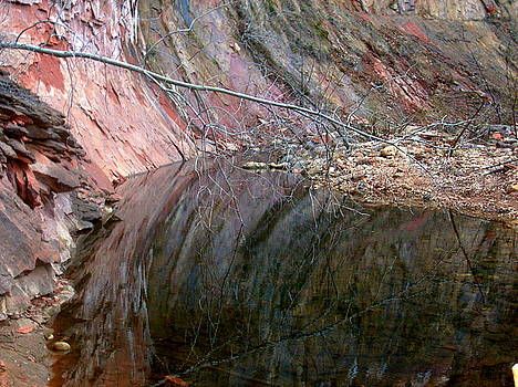Rock Reflections by Maria Mills