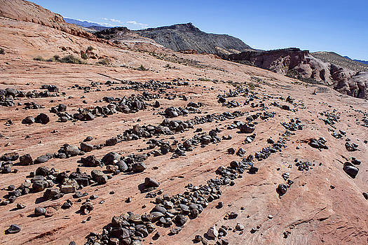 Rock Rows by Scott Harris