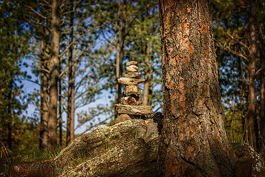 Rock Stack in Forest by Ray Van Gundy