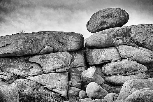 Jon Exley - Rock Steady