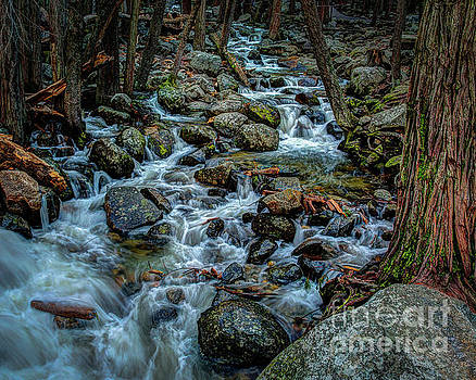 Terry Garvin - Rock Strewn Bridalveil Creek in Yosemite