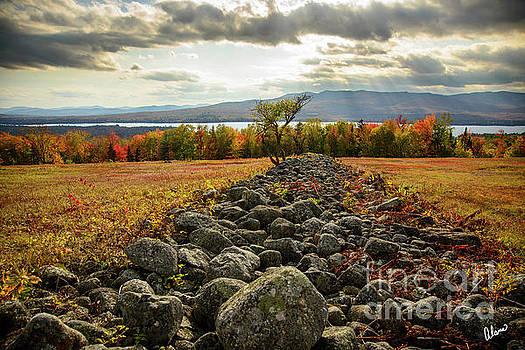 Rock Wall by Alana Ranney
