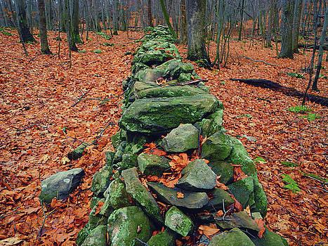 Rock Wall Along the Appalachian Trail in New Jersey by Raymond Salani III