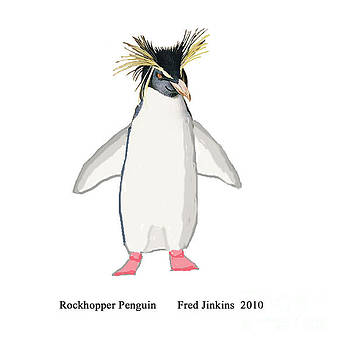 Rockhopper Penguin by Fred Jinkins