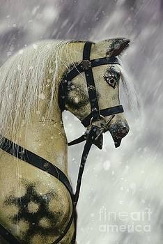 Rocking Horse by Amanda Elwell