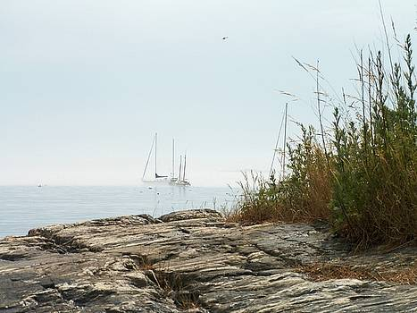 Rockland Fog by Theresa Willingham