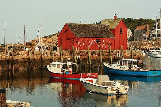 Rockport Harbor II by Richard Stillwell