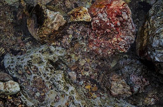 Rocks by Adam Lucio