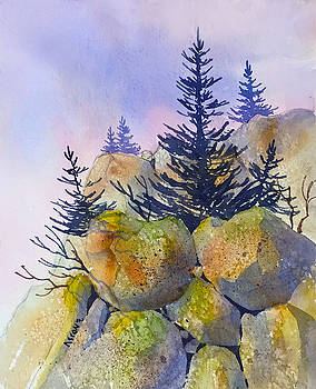 Rocks Along the Glenn by Teresa Ascone