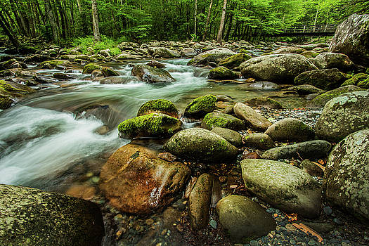 Rocks and River Flowing in Smoky Mountains by Carol Mellema