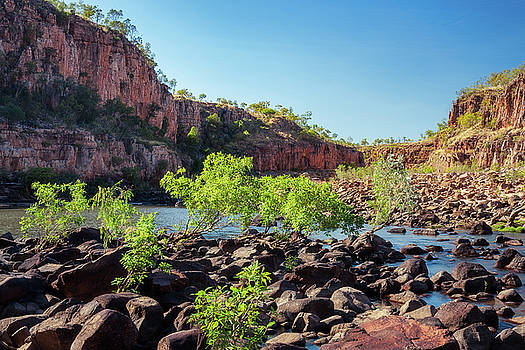 Rocks and vegetation are blocking the river at Katherine Gorge by Daniela Constantinescu