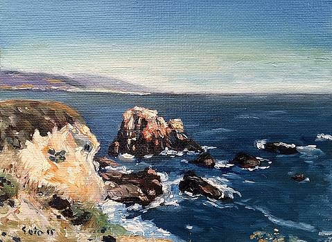 Rocks by Big Sur by Victor SOTO