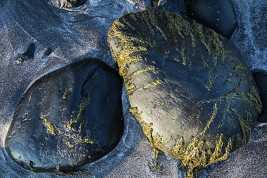 Rocks from Talisker Beach 2 by Davorin Mance