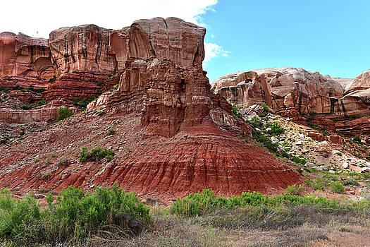 Rocks in the Bluff by Jeffrey Hamilton