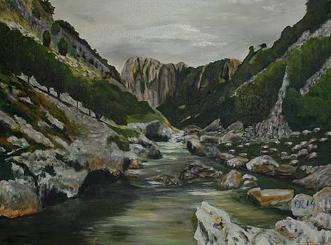 Rocks in the river by Pedro Riera