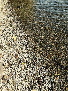 LeLa Becker - rocks in water