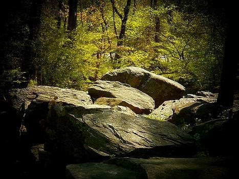 Rocks by Joyce Kimble Smith