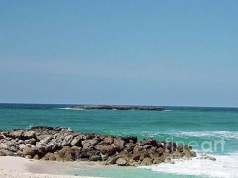 Gary Wonning - Rocky Beach