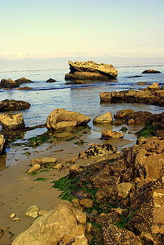 Marty Koch - Rocky Beach