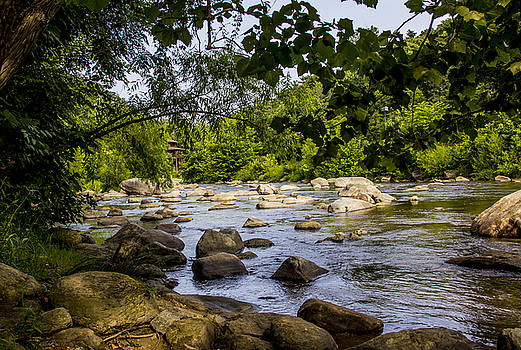 Allen Nice-Webb - Rocky Broad River