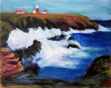Rocky Coast by Lia Marsman