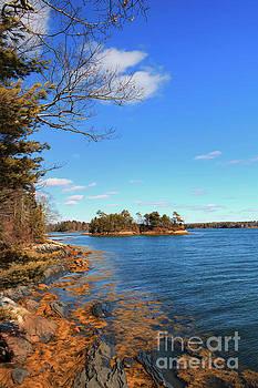 Rocky Coast of Maine by Elizabeth Dow