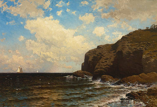 Rocky Coast With Breaking Waves by MotionAge Designs