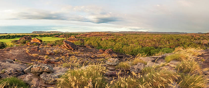 Rocky Escarpment and golden grasses -Kakadu by Daniela Constantinescu