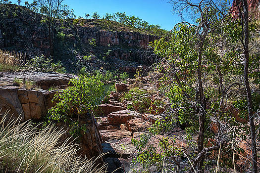 Rocky escarpment on the side of the river at Katherine Gorge, Australia by Daniela Constantinescu