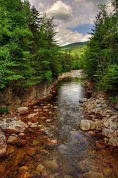 Rocky Gorge - White Mountains NH by Joann Vitali
